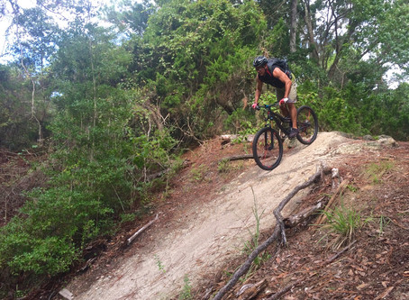 Palm Coast Trails, FL