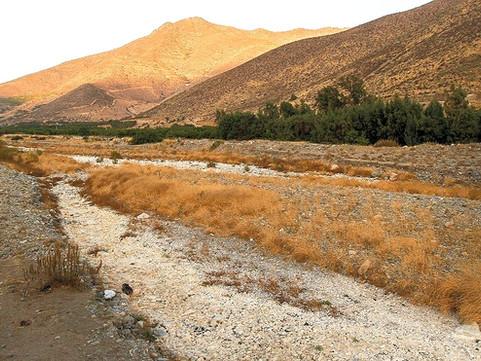 Petorca y la sequía, un tema de gestión