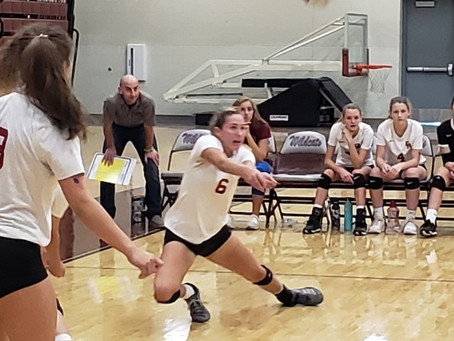 Lady Wildcat Volleyball pounds the Lady 'Dogs