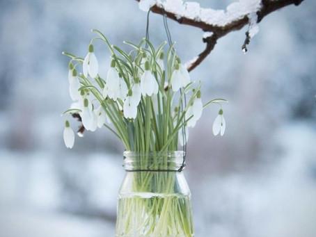 Слезы Снежной королевы. La Neige от Марины Волковой.