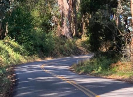 Inspire-Biking thru the Eucalyptus Grove.  Morning Ride 17 Miles, 1667 Ft., 107 Min. Moving Time.