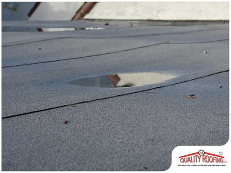 Signs Your Commercial Roof Is Experiencing Issues