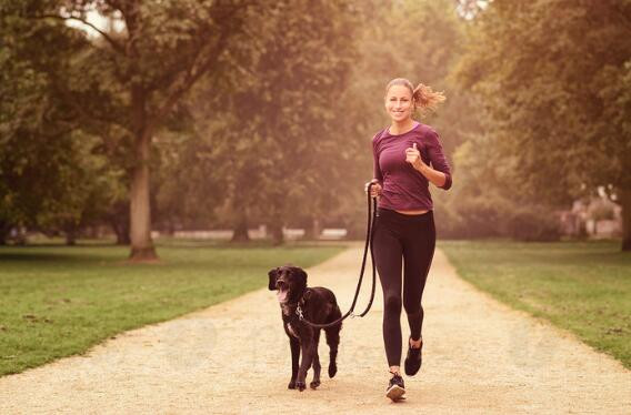 5 Things to do Outside with Your Dog