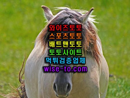 탑 TOP 먹튀검증 완료 [스포츠토토]