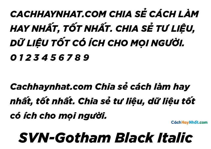 SVN-Gotham Black Italic