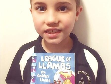 League of Llamas: The Golden Llama, by Aleesah Darlison