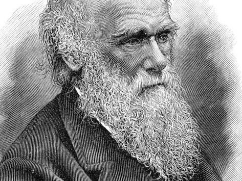 Por que Charles Darwin pode ter sido um dos maiores economistas da história