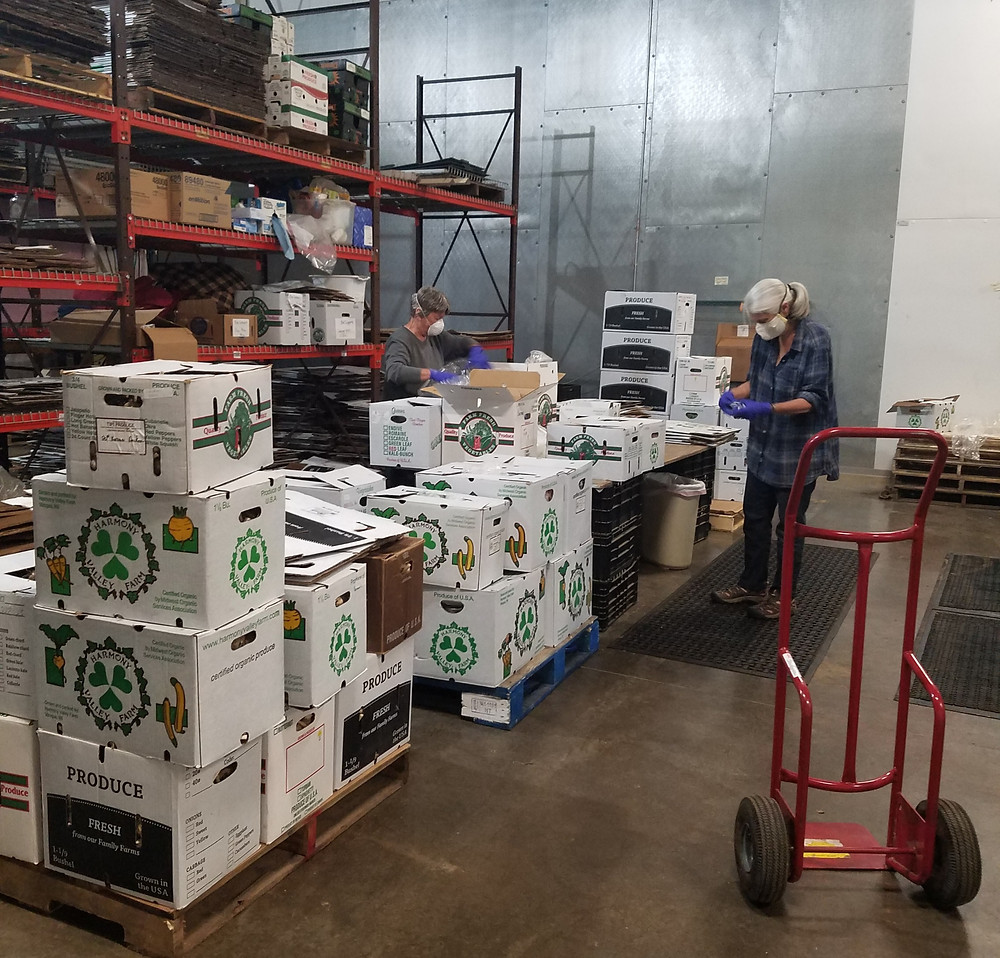 organic produce from Harmony Valley Farm being sorted for distribution