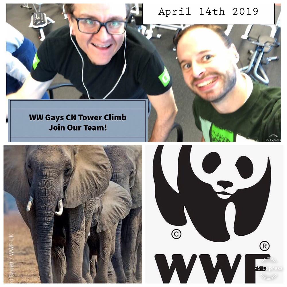 CN Tower Climb for WWF April 14th