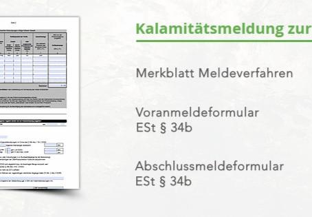 Formulare zur Steuervergünstigung bei Kalamitätsholz stehen zum Download bereit