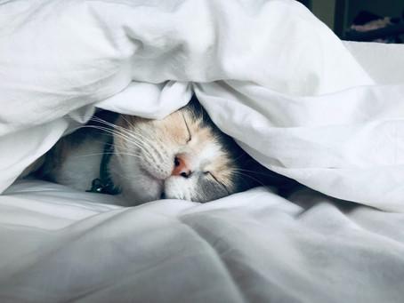 9 Tips to Improve your sleep: