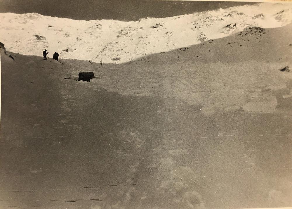 Лавиный конус| skitour.club| Блог Сергея Чеботова