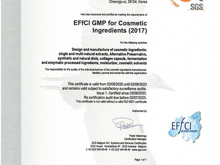 ACTIVON obtained the EFfCI GMP certification
