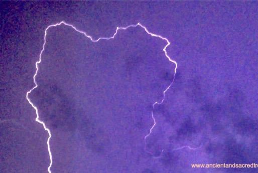 Lightning Tree Prayers and Blessings