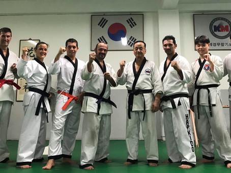 Entrenamiento en Corea 2018 con el GM Kim, Nam Jai