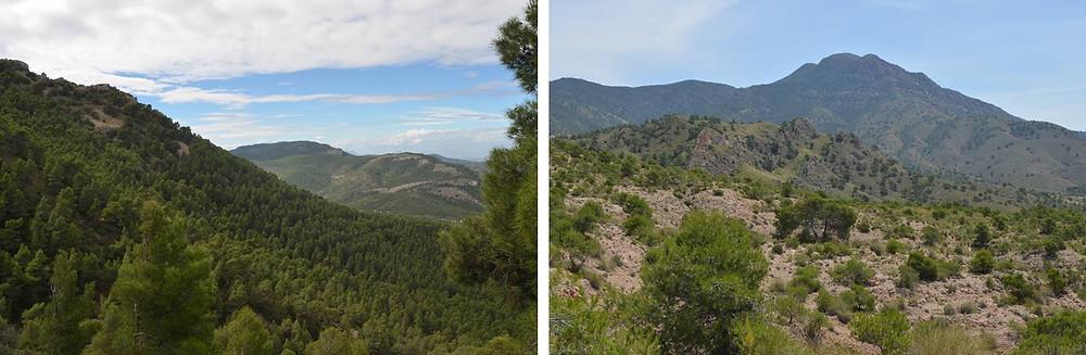 Sierra de la Pila y sierra del Carche. El Rollo Verde. Región de Murcia.