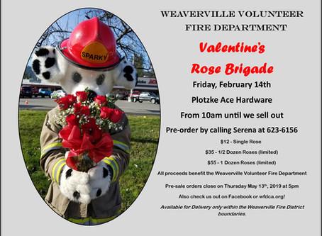 Valentine Rose Sale