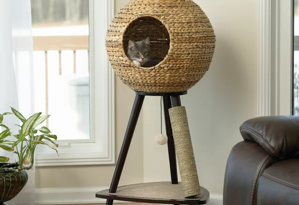 Joss & Main Sphere Cat Tree (Review) – One of The Best Cat Trees Ever