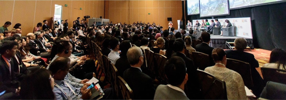 World Cities Summit High Pannel on City Inclusiveness Singapore