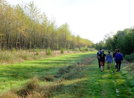 Over Alpaca's en Kermtse konijnen: Mijn eerste vrijwilligersweekend