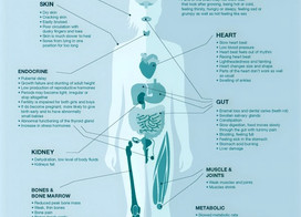 What is Starvation Syndrome?