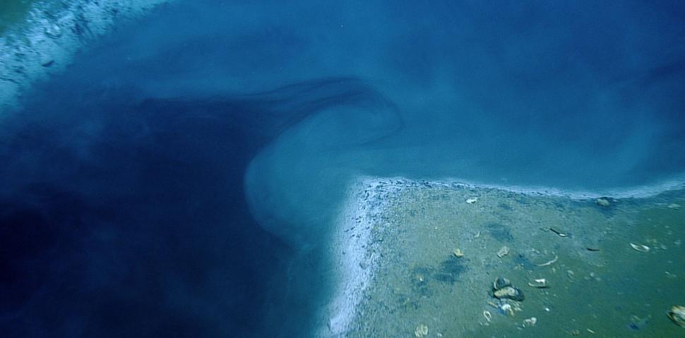 The Beautiful Briny Sea