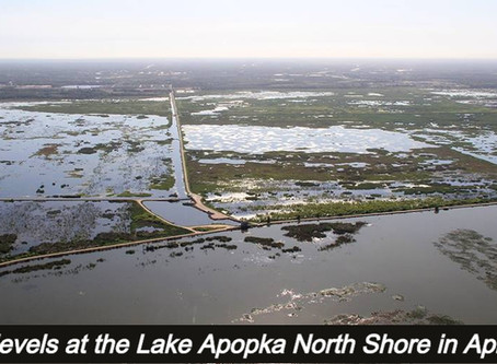 District will close the Lake Apopka Wildlife Drive Sunday for Hurricane Isais