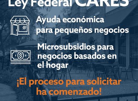 MICROSUBSIDIOS PARA NEGOCIOS BASADOS EN EL HOGAR