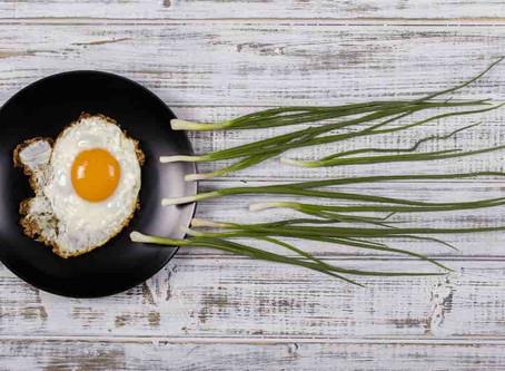 Estudio asocia alimentación elevada en grasas con alteraciones en el desarrollo espermático