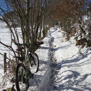 Neige à Yzeron