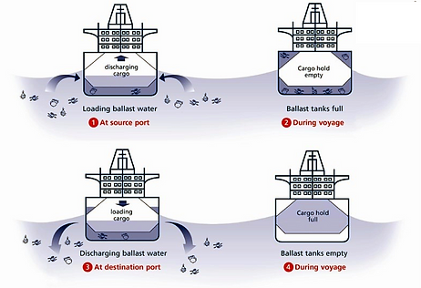Example of ballast water management (BWT) on ships