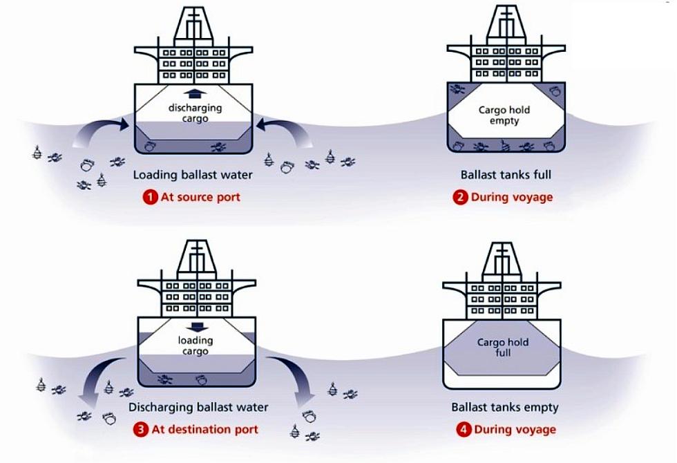 Gestión de agua de lastre (BWT) en barcos