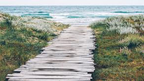 De tu tierra interior al mar de tu conciencia