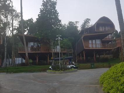 Yuk Bikin Gathering Di Sparks Forest Adventure Sukabumi