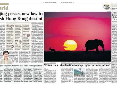 Eines meiner schönsten und aktuellsten Bilder in der Times vom 1. Juli 2020