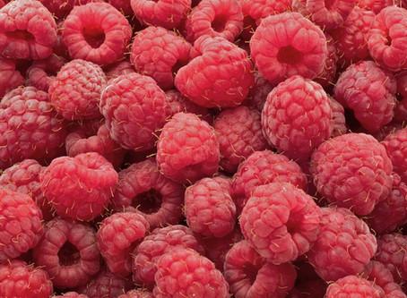 Notice the Raspberries
