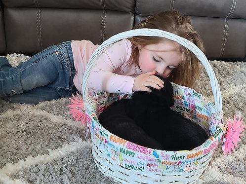 Black Labrador Puppy Deposit (Born 2/10/21))