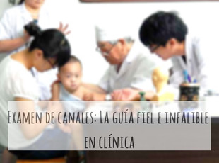 Examen de canales: La guía fiel e infalible en clínica