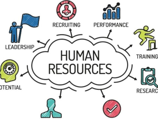 What is Human Resource means to Consulting?