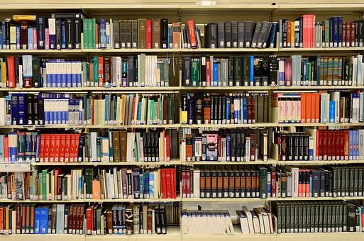 libros, leer, lectura, dia del libro, frases, textos, se el jefe, hectorrc.com