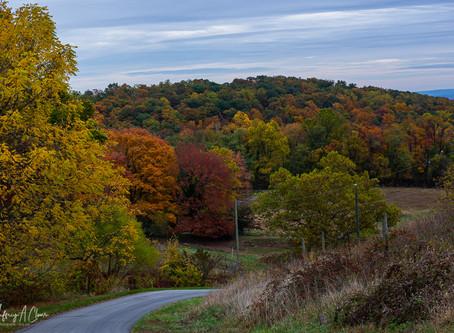 Color of Hollin Farms