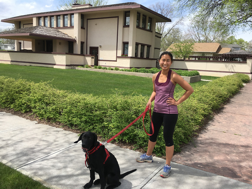 walking dog by the Frank Lloyd Wright house
