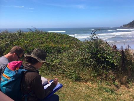 Distraction -- Cape Perpetua Visitor Survey Report