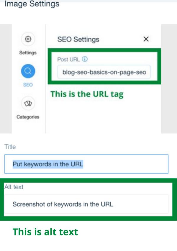 Screenshot of alt text keywords for SEO