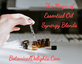 Essential Oil Synergy Blends - Magical Aromatherapy