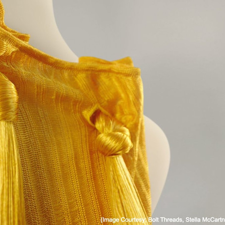 What Is The Future Of Spider Silk In Fashion?