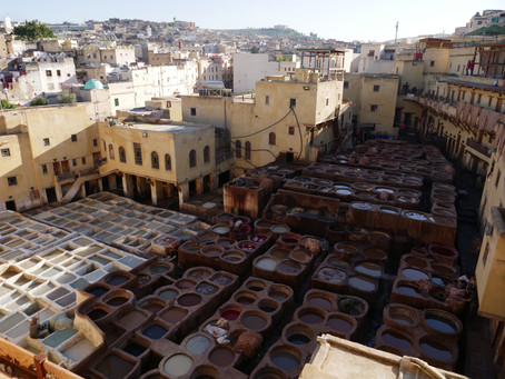 Tannery and University in Fez