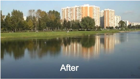 Clean Pond