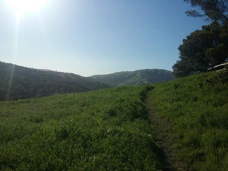 I sentieri di Marin County