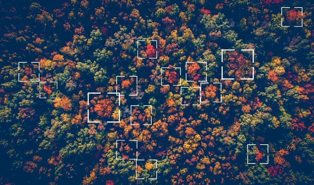運用空拍技術與影像辨識技術作為大數據應用
